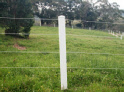 Equine Fencing